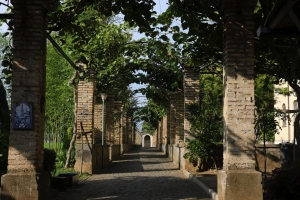 Frascati_3409.jpg